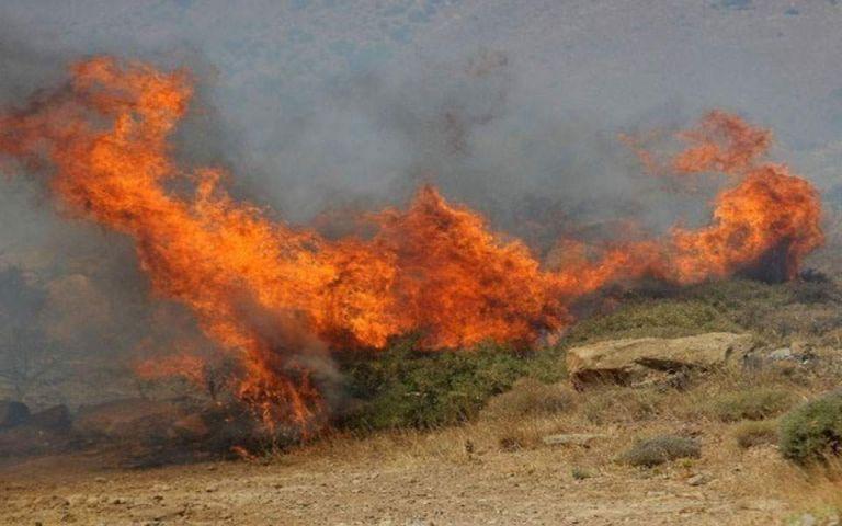 Πυρκαγιά στη Νέα Κίο Αργολίδας | tovima.gr