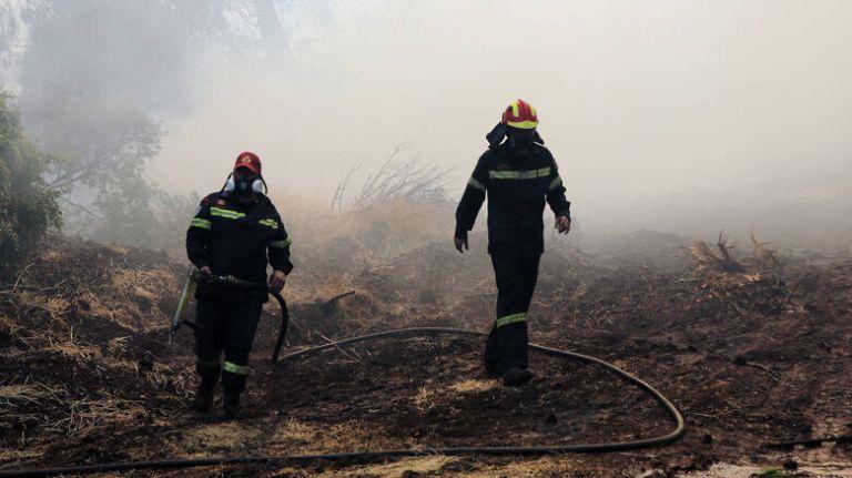 Στα ίχνη εμπρηστή η Πυροσβεστική για τις φωτιές σε Βάρδα και Μανωλάδα Ηλείας | tovima.gr