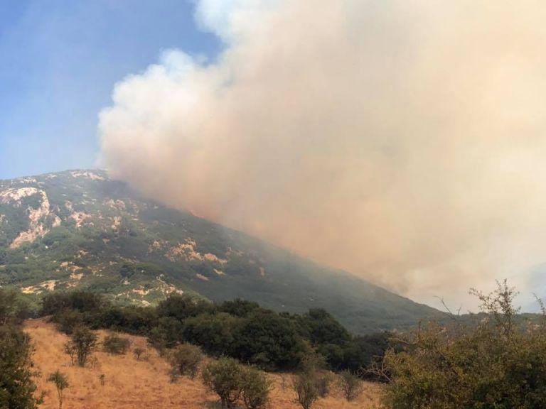 Πυρκαγιά στο Μουρίκι Καλαβρύτων | tovima.gr