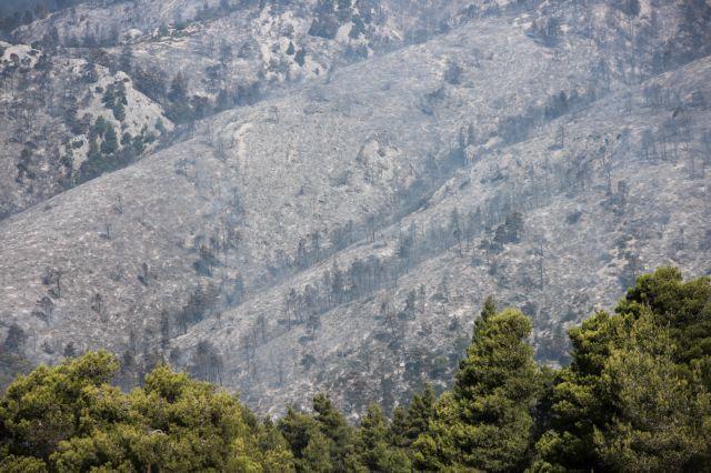 Φωτιά στην Εύβοια -Βίντεο : Εικόνες απόλυτης καταστροφής | tovima.gr