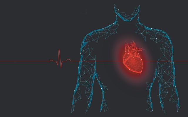 Εκτυπωμένη καρδιά με φυσικά υλικά | tovima.gr
