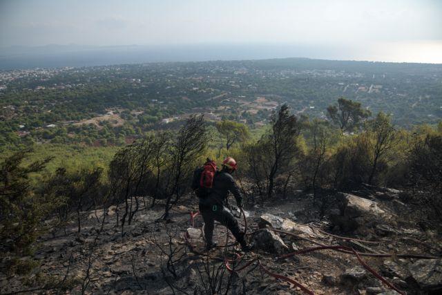 Νέα Μάκρη – πυρκαγιά: Διακοπή κυκλοφορίας των οχημάτων | tovima.gr