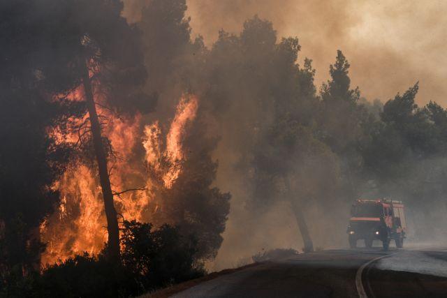 Φωτιά στην Κάρυστο : Δεν απειλούνται κατοικίες | tovima.gr