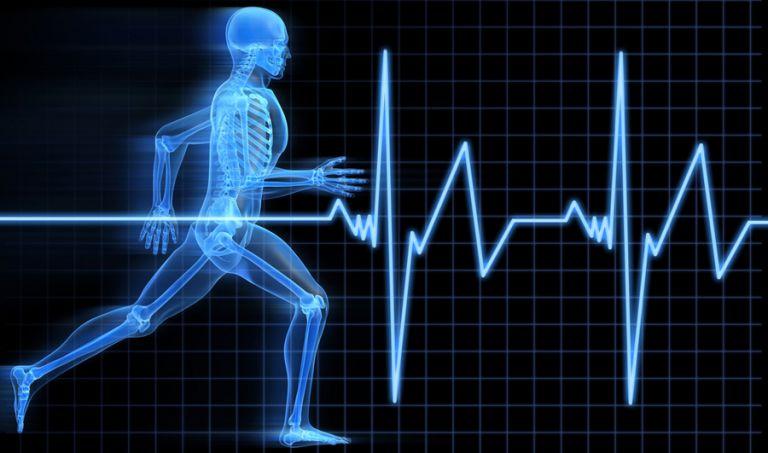 Νέα δεδομένα για τις αντιδράσεις μας στον ξαφνικό κίνδυνο – Ποια ορμόνη τις καθορίζει | tovima.gr