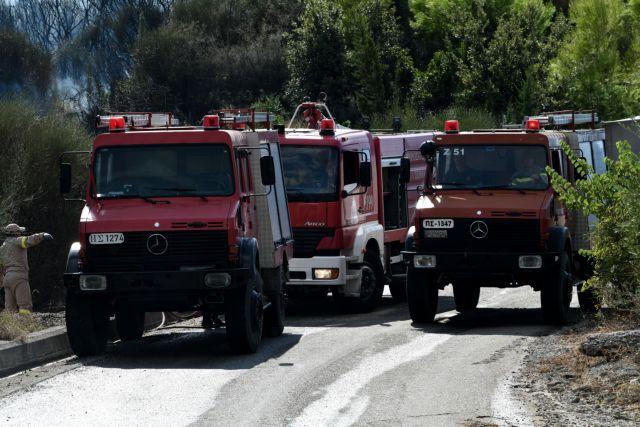 Νέα φωτιά στον Πύργο Ηλείας   tovima.gr