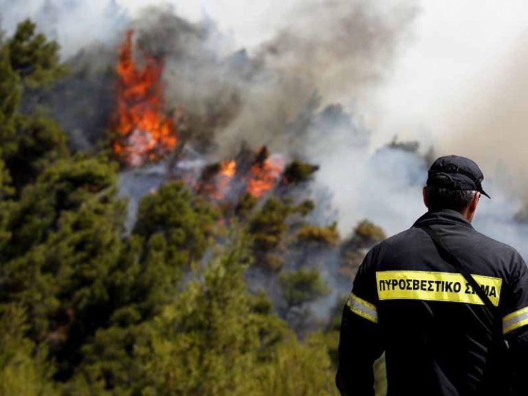 Φωτιά στη Ζάκυνθο – Καίει δάσος στο χωριό Αγαλάς | tovima.gr