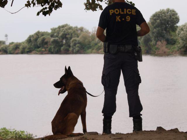 Αστυνομικός σκύλος «ξετρύπωσε» ναρκωτικά από στάβλο | tovima.gr