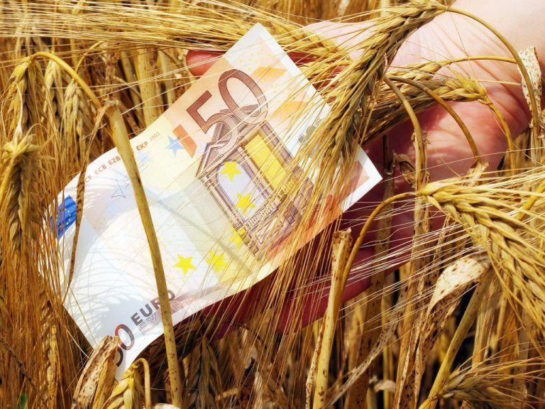 Η νέα ΚΑΠ φέρνει μειώσεις έως και 5% στις αγροτικές επιδοτήσεις | tovima.gr