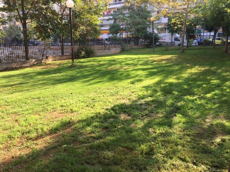 Δήμος Πειραιά : Ανάπλαση και συντήρηση πράσινου σε όλες τις γειτονιές   tovima.gr