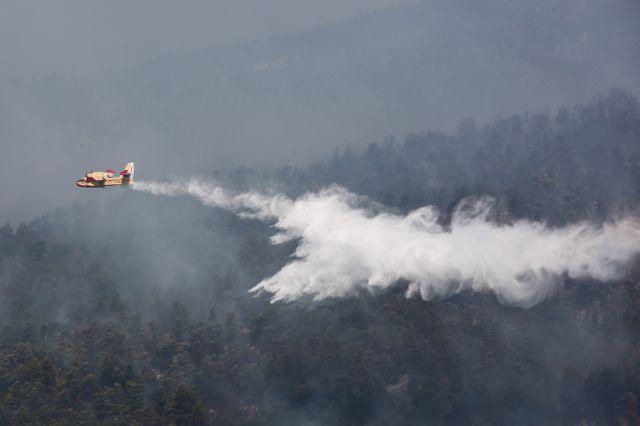 Φωτιά στην Μεσσηνία : Καίει δασική έκταση στους Γαργαλιάνους | tovima.gr