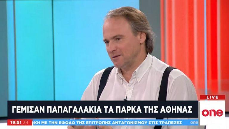 O Πρόεδρος Ελληνικής Ορνιθολογικής Εταιρείας στο One Channel: Γέμισαν τα πάρκα της Αθήνας παπαγαλάκια | tovima.gr