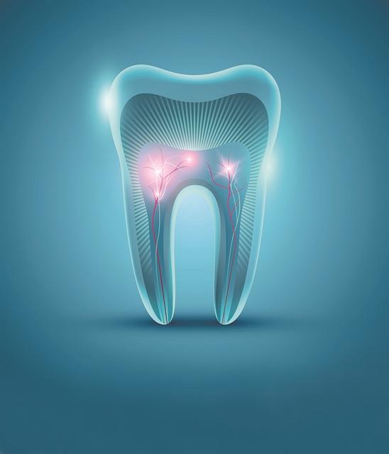 Αναγεννητική ιατρική: Οι ιστοί των δοντιών μπορούν να «γεννήσουν» | tovima.gr