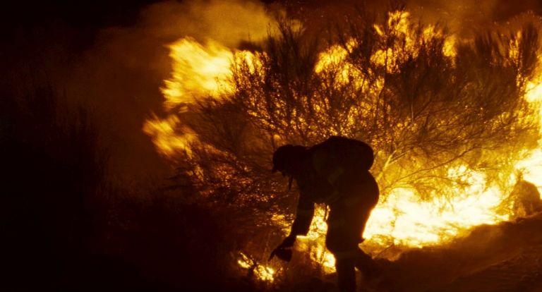 60ό Φεστιβάλ Θεσσαλονίκης – Βραβεία : Φωτιά και πυρετός | tovima.gr