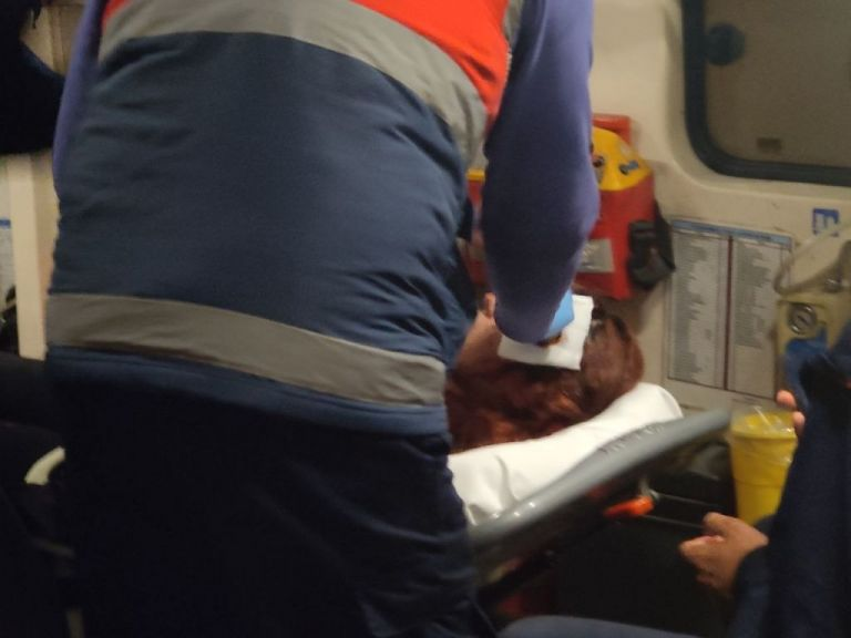 Εξάρχεια : Επίθεση από τα ΜΑΤ καταγγέλλει η 20χρονη που τραυματίστηκε στο κεφάλι   tovima.gr