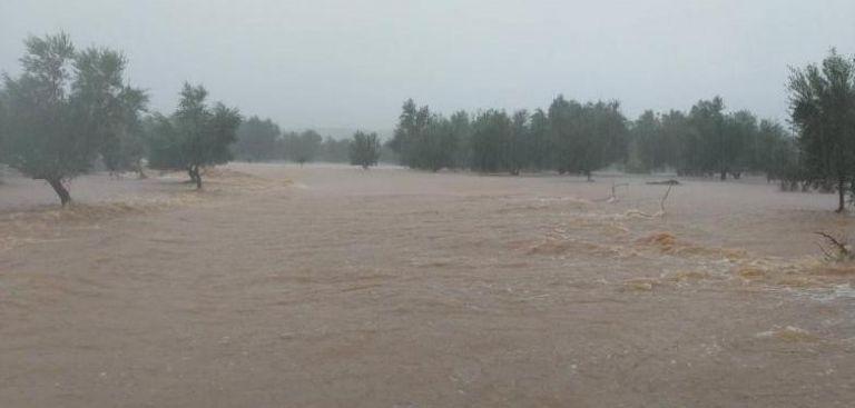 Μεσσηνία : Οι βροχές «έπνιξαν» τον κάμπο | tovima.gr