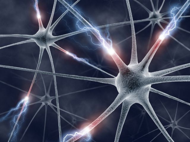 Οι πρώτοι τεχνητοί νευρώνες στη μάχη καταπολέμησης των χρόνιων παθήσεων | tovima.gr