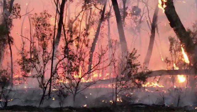 Αυστραλία: Συνεχίζεται η μάχη με τις φλόγες – Πάνω από 140 πυρκαγιές | tovima.gr