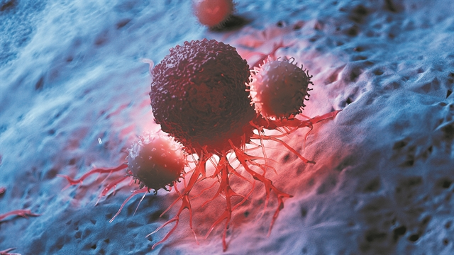 Κυτταρικό όπλο κατά του καρκίνου   tovima.gr