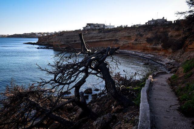 Το MEGA στο πολύπαθο Μάτι: Ο κοροναϊός «πάγωσε» την ανοικοδόμηση της περιοχής | tovima.gr