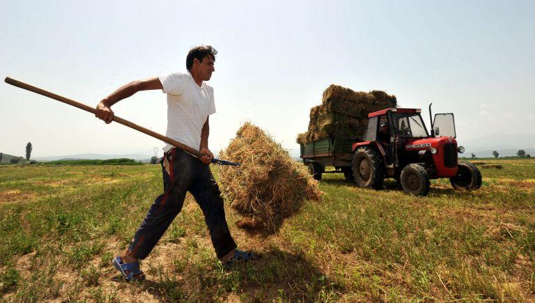 Στην «εντατική» η γεωργική παραγωγή – Αναζητούνται απεγνωσμένα εργάτες   tovima.gr