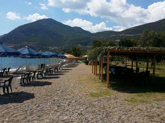 Απλοποίηση των διαδικασιών για την παραχώρηση απλής χρήσης αιγιαλού και παραλίας   tovima.gr