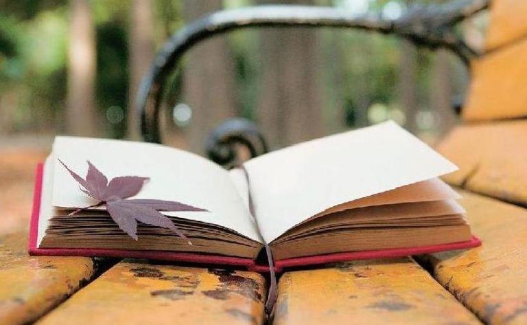 Ποιος ενισχύει τους έλληνες συγγραφείς;   tovima.gr