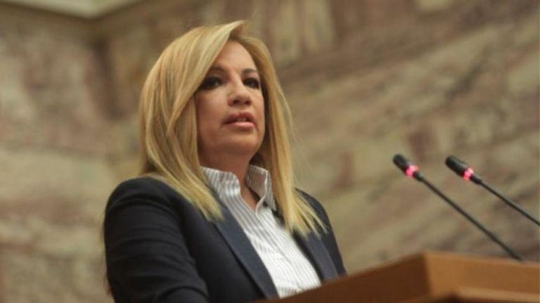 Γεννηματά για Ερντογάν: Η κυβέρνηση οφείλει να ζητήσει παρέμβαση ΟΗΕ και ΕΕ | tovima.gr