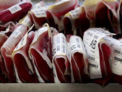 Αικατερίνη Σακελλαροπούλου:  Ζωτικής σημασίας η εθελοντική αιμοδοσίας | tovima.gr