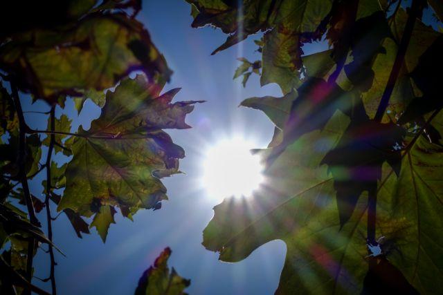 Άνοδος της θερμοκρασίας από Τρίτη – Πού θα αγγίξει τους 38 βαθμούς ο υδράργυρος | tovima.gr