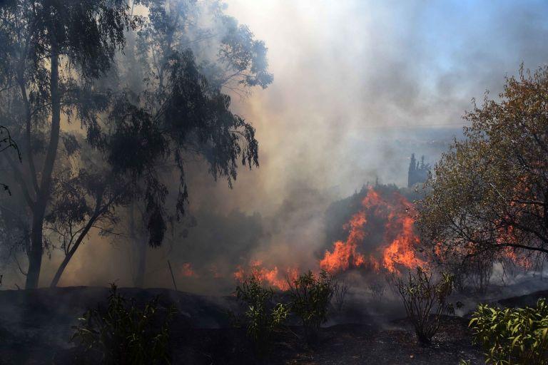 Υπό μερικό έλεγχο φωτιά στον Άγιο Στέφανο Αττικής | tovima.gr