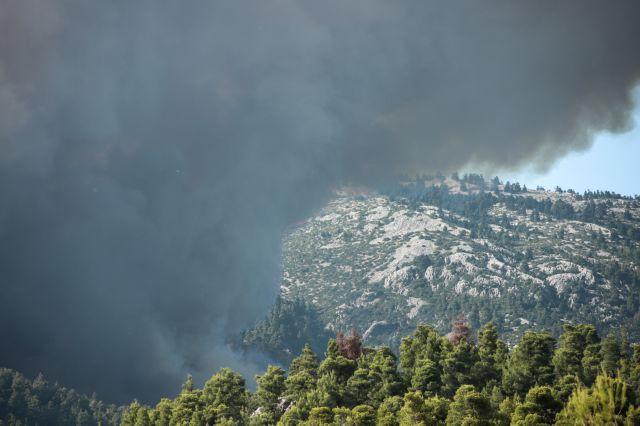 Φωτιά σε δασική έκταση στη Ζάκυνθο | tovima.gr