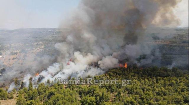 Θεολόγος Φθιώτιδας: Σε δύο μέτωπα η φωτιά – Διακόπηκε η κυκλοφορία   tovima.gr