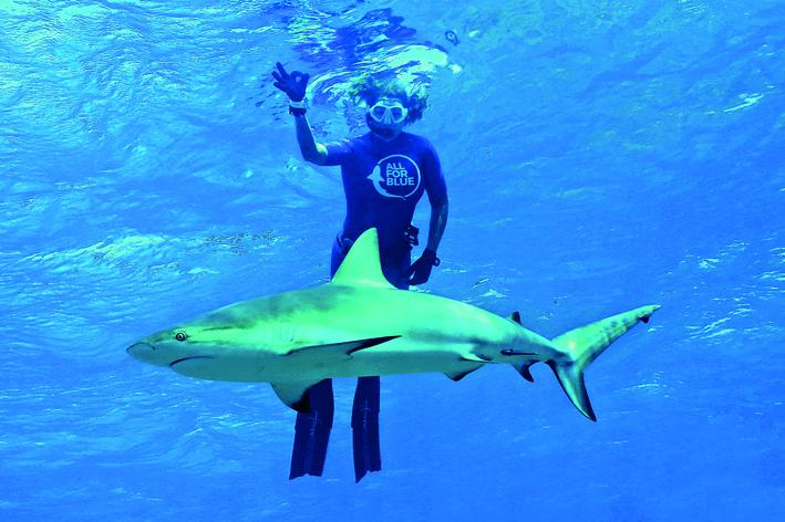 Κολυμπώντας με τους καρχαρίες | tovima.gr