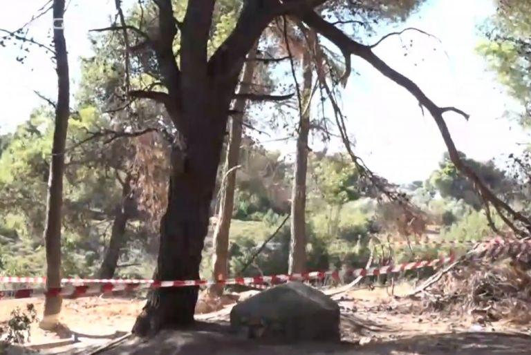 Βαρυμπόμπη: Θησαυρό έψαχναν οι τρεις άνδρες που εντοπίστηκαν νεκροί   tovima.gr