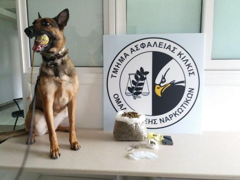 Θεσσαλονίκη: Η Minnie ξετρύπωσε κοκαΐνη σε σπίτι στην Ευκαρπία | tovima.gr