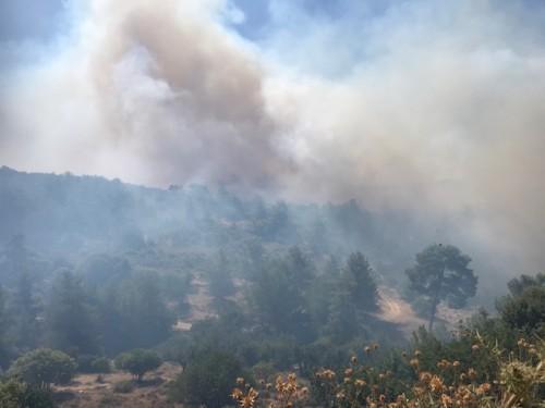 Κύπρος: Ανεξέλεγκτα μέτωπα πυρκαγιάς σε Λεμεσό και Πάφο – έξι εστίες   tovima.gr