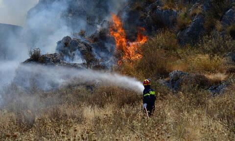 Φωτιά στα Χανιά: Εκκενώθηκε προληπτικά οικισμός | tovima.gr