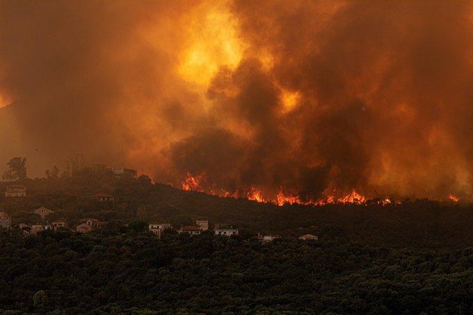 Σαράντα οκτώ δασικές πυρκαγιές εκδηλώθηκαν το τελευταίο 24ωρο | tovima.gr