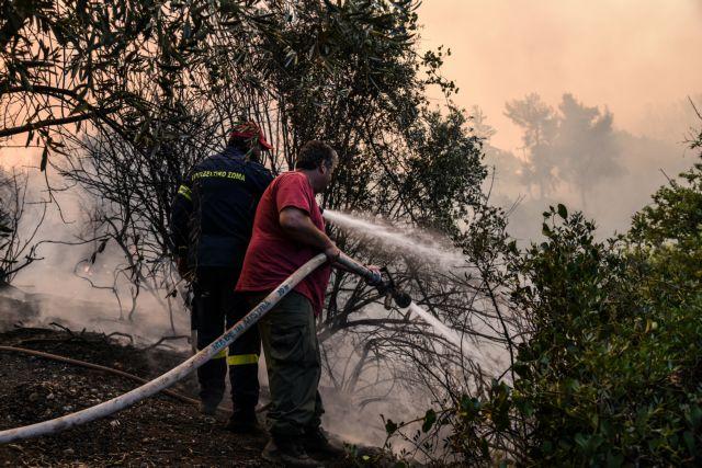Σε ύφεση η πυρκαγιά στην Αρτέμιδα Αττικής | tovima.gr