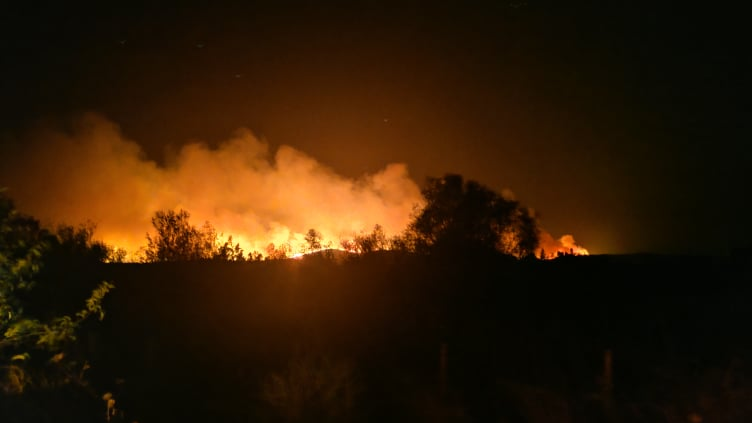 Ολονύχτια μάχη με τις φλόγες στην Αλεξανδρούπολη | tovima.gr