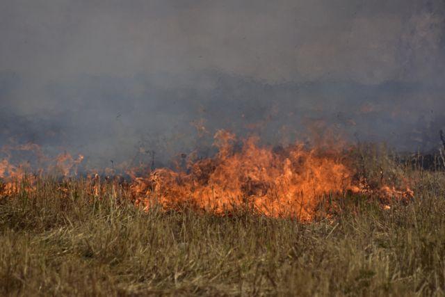 Φωτιά στον Γοργοπόταμο | tovima.gr