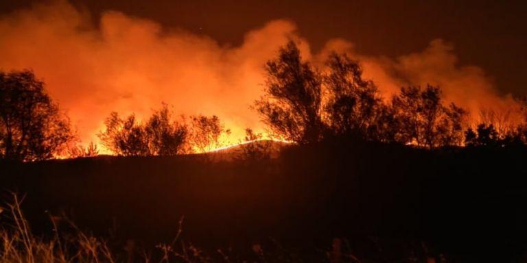 Έβρος : Έρευνα για τις φωτιές των τελευταίων ημερών – Εξετάζεται το ενδεχόμενο εμπρησμών | tovima.gr
