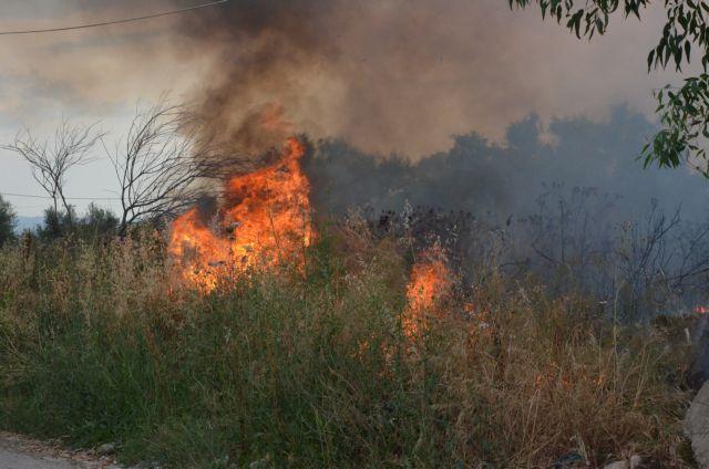 Φωτιά στη Λαυρεωτική – Καίει δασική έκταση   tovima.gr