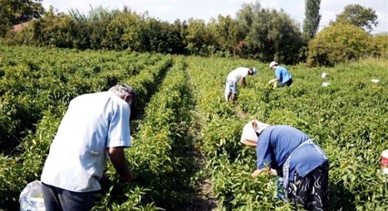 Κορωνοϊός – Λακωνία : Σαρωτικοί έλεγχοι – 32 θετικά κρούσματα σε εργάτες γης | tovima.gr
