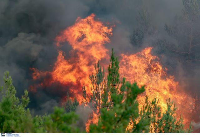 Φωτιά στην Πύλο : Επιχειρούν ισχυρές δυνάμεις της Πυροσβεστικής | tovima.gr