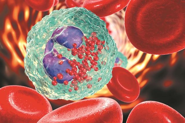 Το κυτταρικό «αλεξίπτωτο» που φρενάρειτη γήρανση | tovima.gr