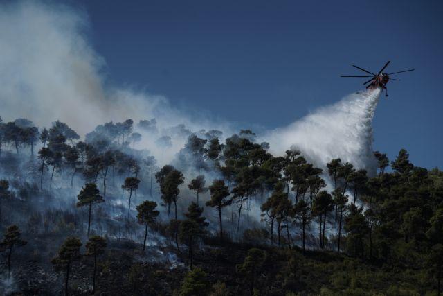 Φωτιά στην Κάρυστο – Καίει δασική έκταση | tovima.gr