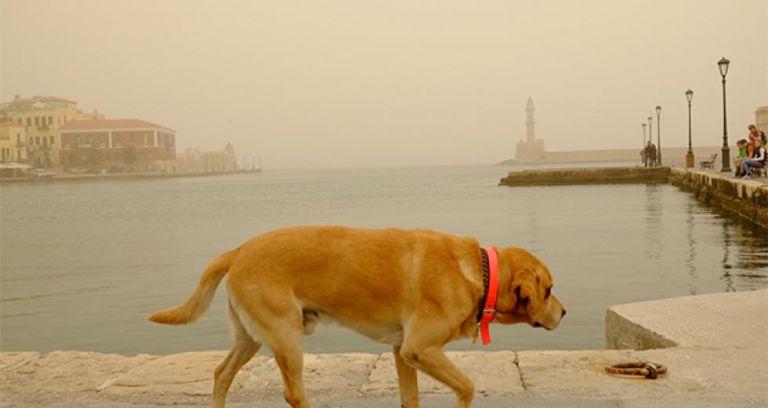 Σκόνη και πολύ υψηλές θερμοκρασίες – Άγγιξε τους 27 βαθμούς το θερμόμετρο στα Χανιά | tovima.gr