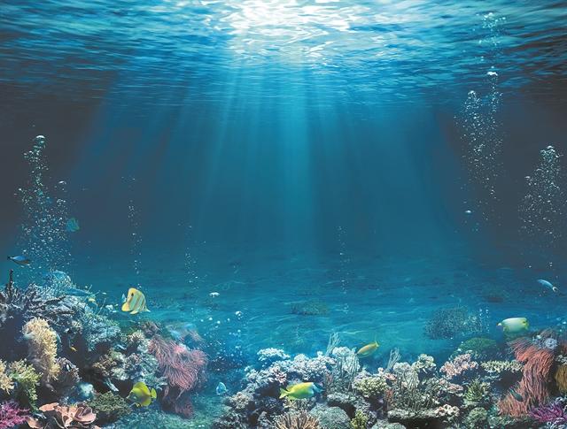 Η κλιματική αλλαγή στο θαλάσσιο περιβάλλον   tovima.gr