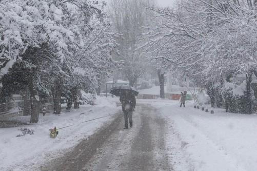 Μήδεια : Χωρίς ρεύμα 250.000 νοικοκυριά – Nέα σύσκεψη στην Πολιτική Προστασία | tovima.gr